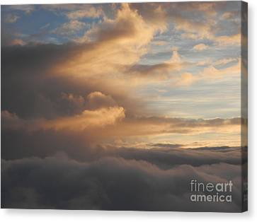 Flying Into Morning Canvas Print by Margaret McDermott