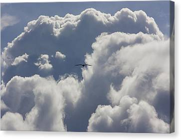 Flying Into The Storm Canvas Print