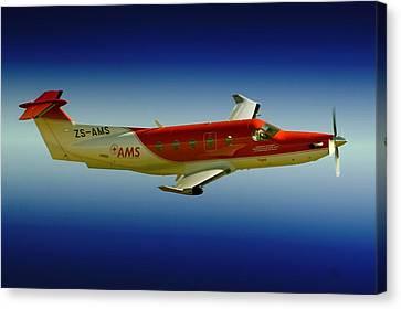 Flying Canvas Print by Paul Job