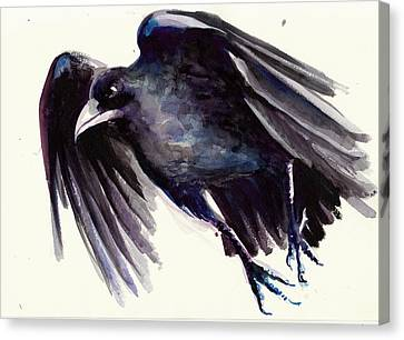 Flying Raven - Crow Painting Canvas Print by Tiberiu Soos