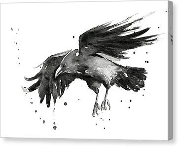 Flying Raven Watercolor Canvas Print by Olga Shvartsur