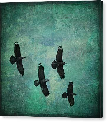 Canvas Print featuring the photograph Flying Ravens by Peggy Collins