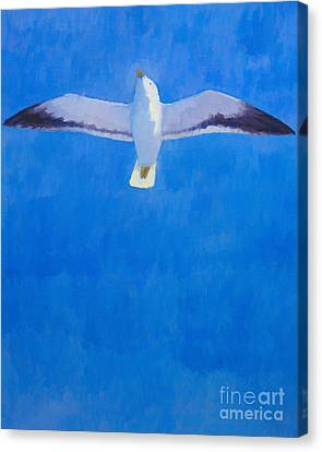 Flying Seagull Canvas Print by Lutz Baar