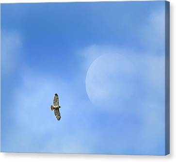 Flying To The Moon Canvas Print by Bill Wakeley