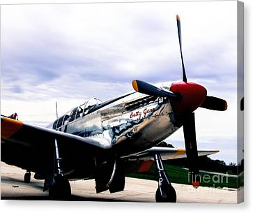 Flying With Betty Jane Canvas Print by Steven  Digman