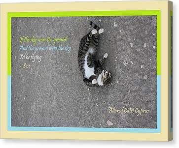 Flying With Sose From The Park Altered Cats Cyprus Canvas Print by Anita Dale Livaditis