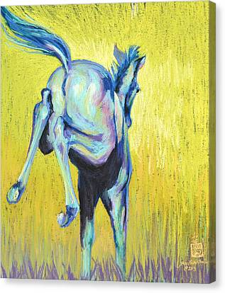 Foal At Play Canvas Print by Sally Buffington