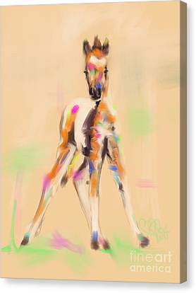 Foal Cute Fellow Canvas Print