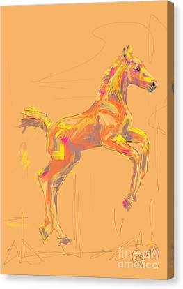 Foal Out And About Canvas Print by Go Van Kampen