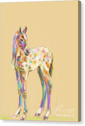 Foal Paint Canvas Print