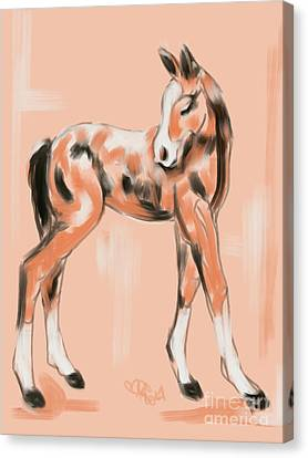 Foal Peach Canvas Print by Go Van Kampen
