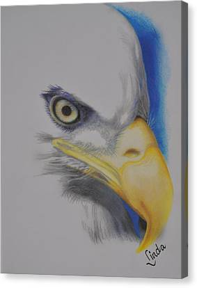 Focused Eagle Canvas Print