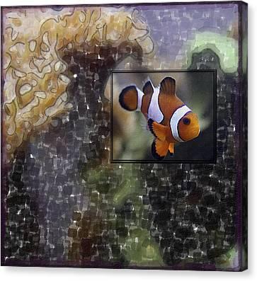 Clown Fish Canvas Print - Focused On The Fish by Richard Malin