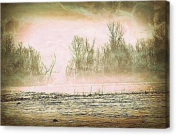 Fog Abstract 1 Canvas Print by Marty Koch