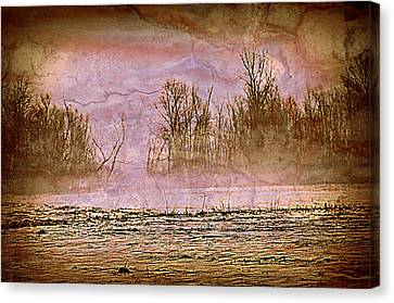 Fog Abstract 3 Canvas Print by Marty Koch