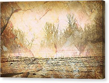 Fog Abstract 4 Canvas Print by Marty Koch