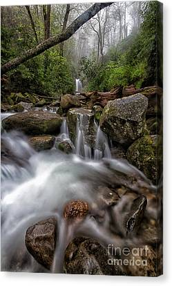 Fog And Water Canvas Print by Todd Bielby