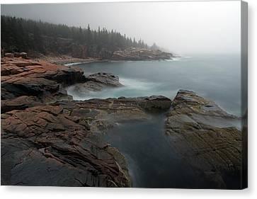 Fog At Acadia National Park Canvas Print
