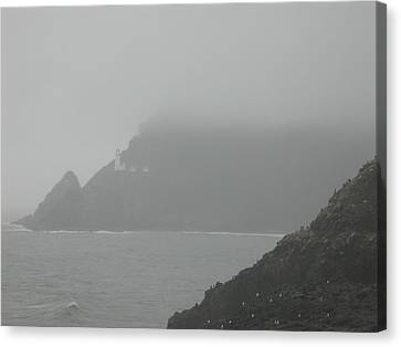 Fog At The Coast Canvas Print by Yvette Pichette