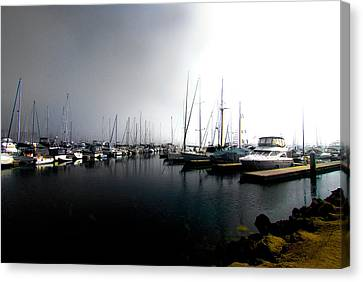 Canvas Print featuring the photograph Fog Bank by Joseph Hollingsworth