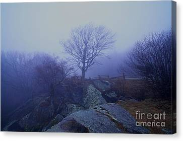 Fog Invasion Canvas Print