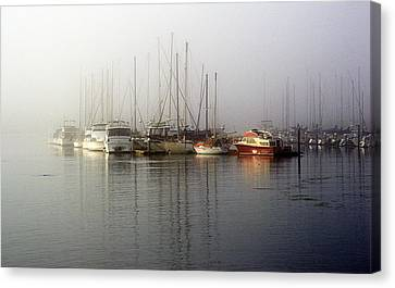 Fog Light In The Harbor Canvas Print