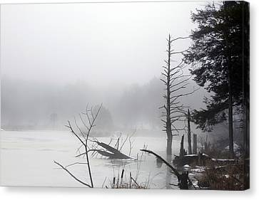 Fog On The Beaver Pond Canvas Print by David Simons