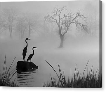 Canvas Print featuring the digital art Fog On The Lake by Nina Bradica