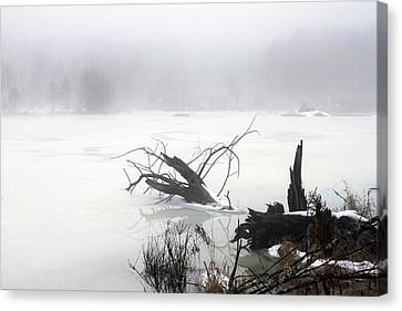 Fog On The Pond Canvas Print by David Simons