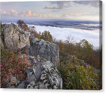 Fog Over Valley Petit Jean State Park Canvas Print by Tim Fitzharris