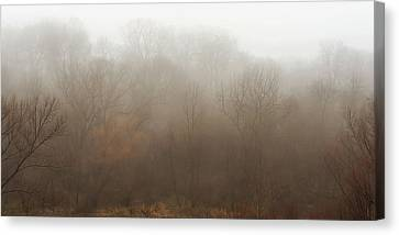 Fog Riverside Park Canvas Print by Scott Norris