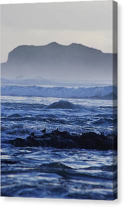 Canvas Print featuring the photograph Fog Rolling In by Adria Trail
