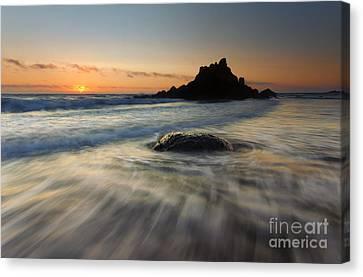 Fogarty Tides Canvas Print by Mike  Dawson