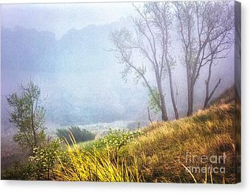 Foggie Dune Colored Canvas Print