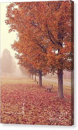 Foggy Autumn Morning Etna New Hampshire Canvas Print by Edward Fielding