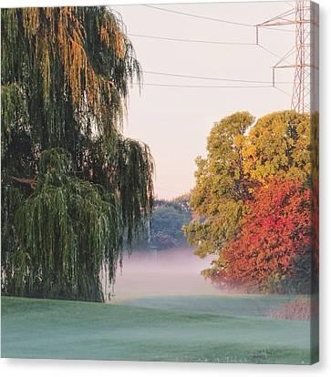 Foggy Autumn Canvas Print by Nikki McInnes
