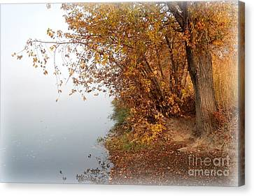 Foggy Autumn Riverbank Canvas Print by Carol Groenen