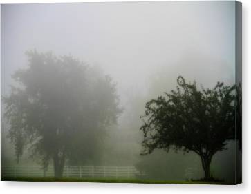 Foggy Country Landscape Canvas Print by Dan Sproul