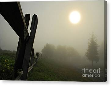 Foggy Country Road Canvas Print by Lois Bryan