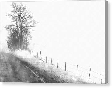 Foggy Country Road Canvas Print by Rosemarie E Seppala
