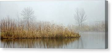 Foggy Duck Pond 1 Canvas Print by James Blackwell JR