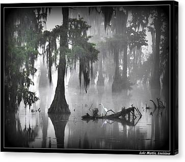 Foggy Egret Canvas Print