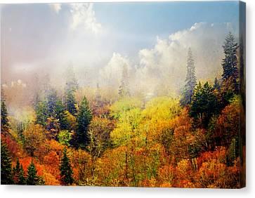Foggy Fall Canvas Print by Marty Koch