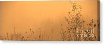 Foggy Fire Canvas Print