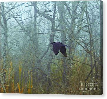 Foggy Flight Canvas Print by Judy Wood