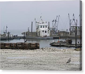 Foggy Harbor Canvas Print by Pamela Patch