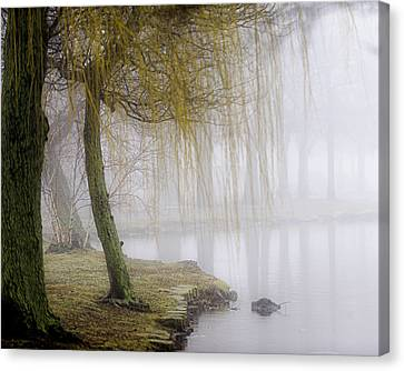 Foggy Lake Morning Canvas Print by Vicki Jauron