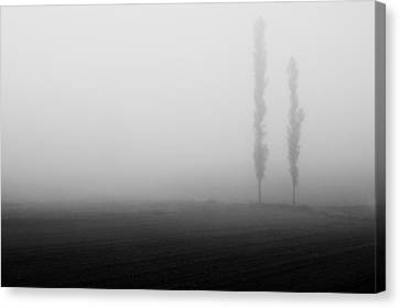 Foggy Landscape Canvas Print by Davorin Mance
