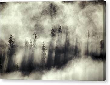 Foggy Landscape Stephens Passage Canvas Print by Ron Sanford