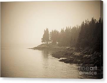 Foggy Maine Coast Canvas Print